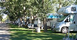 Cobram Willows Caravan Park – Cobram VIC